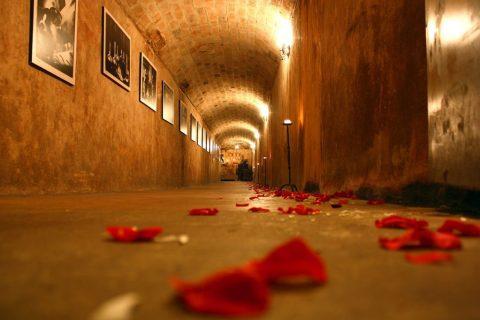 wine_wedding-1024x682